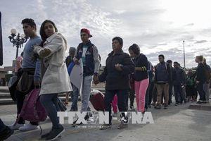 Bỉ và Anh hợp tác chống nhập cư trái phép