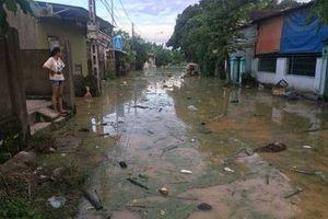 Nghệ An: Người dân khốn đốn vì rác thải, xác động vật trôi vào nhà