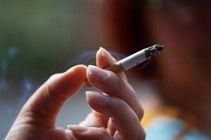Trong thuốc lá có bao nhiêu chất độc hại?