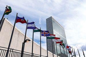 Liên hợp quốc phủ nhận ra 'chỉ thị mật' cản trở tái thiết Syria