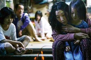 Liên hoan phim Quốc tế Hà Nội 2018 chiếu phim thắng Cannes, Oscar