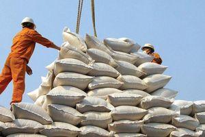 Xuất khẩu gạo: Bỏ tiểu ngạch, chuyển sang chính ngạch
