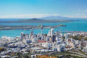 New Zealand siết quản lý bất động sản
