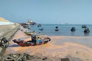 Xin dừng việc đổ 2,5 triệu m3 đất, cát thải xuống biển Hòn La