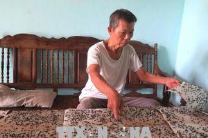 8 năm trùm màn ăn cơm tránh ruồi bãi rác lộ thiên ở Vị Xuyên, Hà Giang
