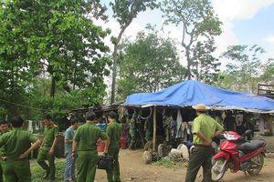 Đắk Lắk: Vụ bắt Hạt trưởng Kiểm lâm: Chi cục trưởng Kiểm lâm tự nguyện giao nộp 8m3 gỗ
