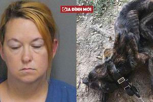 Phẫn nộ người phụ nữ bỏ đói chú chó của bạn trai cũ 30 ngày để trả thù