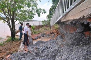 Nhức nhối nạn khai thác cát trái phép trên sông Đồng Nai
