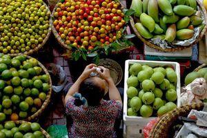 Ngành rau củ quả Việt Nam nhìn từ 'đặt hàng' của Thủ tướng