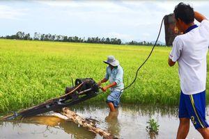 Kiên Giang: Hàng ngàn ha lúa hè thu ở Hòn Đất bị lũ đe dọa ngập