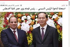 Báo chí Ai Cập ca ngợi chuyến thăm của Chủ tịch nước Trần Đại Quang