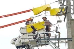 Bảo đảm an toàn hành lang lưới điện cao áp