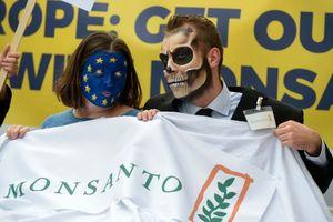 Monsanto đối diện hàng ngàn đơn kiện thuốc diệt cỏ