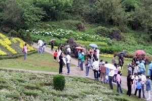 Các tour du lịch ngắn ngày dịp 2/9 hút khách