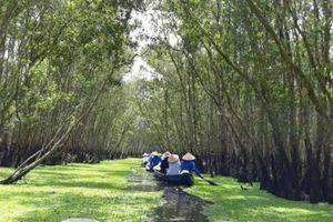 Tận hưởng thiên nhiên xanh mướt mát ở rừng tràm Trà Sư