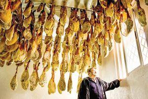 Tây Ban Nha kiểm soát chăn nuôi heo