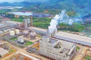 Công ty CP DAP Lào Cai: Nỗ lực vượt khó