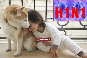 Nghiên cứu mới: Chó cũng có thể nhiễm cúm H1N1 và lây cho người