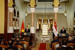 Chủ tịch nước Trần Đại Quang và Tổng thống Ai Cập thông báo kết quả hội đàm