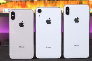 Những thông số cho thấy 3 chiếc iPhone mới sẽ là quái vật tốc độ