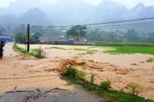 Mưa lớn gây nhiều thiệt hại tại Điện Biên