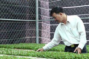TP.HCM: Nông dân dài cổ chờ hỗ trợ giữa một 'rừng' quyết định