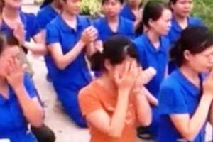 Kỷ luật 5 cán bộ liên quan đến vụ việc giáo viên mầm non quỳ gối