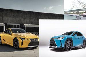 'Soi' bộ đôi xe sang Lexus concept tuyệt đẹp mới trình làng