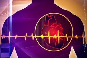 Phát hiện mới: Quá nhiều cholesterol 'tốt' có thể gây chết người