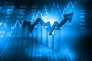 Nhiều cổ phiếu giảm sâu, trắng bên mua