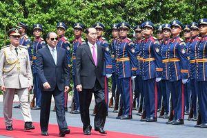Chủ tịch nước Trần Đại Quang: Thương mại Việt Nam - Ai Cập sẽ đạt 1 tỷ USD