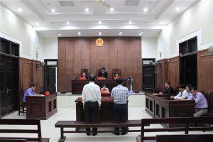 Vụ NK 120 tấn đường ở Quảng Nam: Giữ nguyên quyết định của Hải quan, bác bản án sơ thẩm