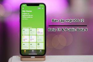 Apple phát hành bản cập nhật iOS 12 beta 11 và public beta 9