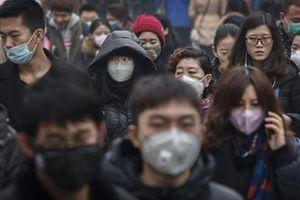 Ô nhiễm không khí làm giảm mạnh trí thông minh