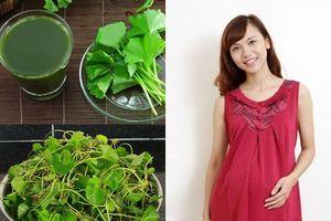 Bà bầu ăn rau má trong thai kỳ có được không?