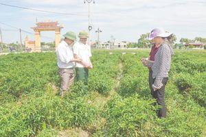 Phát huy vai trò chủ thể của nông dân trong xây dựng nông thôn mới
