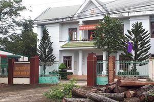 Vụ trùm gỗ lậu Phượng 'râu': Khởi tố thêm Hạt phó hạt kiểm lâm