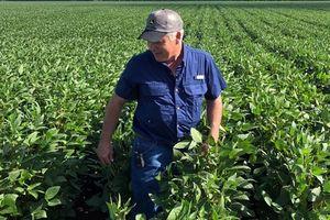 Chính quyền Trump chi tiền cho nông dân vì chiến tranh thương mại