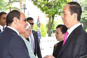 TT Ai Cập: Chuyến thăm của Chủ tịch nước Trần Đại Quang mang tính lịch sử