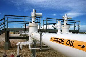 Chuỗi phiên tăng của giá dầu ngưng lại
