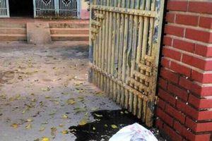 Hà Nội: Triệt phá ổ nhóm chuyên đi ném chất bẩn để đòi nợ
