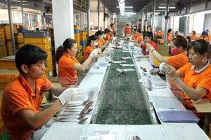 Tìm ra 'nút thắt' trong phát triển ngành công nghiệp Tp. Hồ Chí Minh
