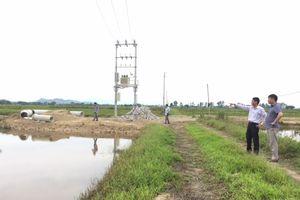 Dự án nuôi cá rô phi Isreal tại Nghệ An: Mỏi mòn chờ bàn giao đất