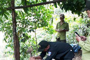 Truy quét lâm khoáng sản trái phép ở Khu bảo tồn thiên nhiên Sông Thanh