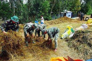 Hơn 40.000 ha lúa ở Kiên Giang bị lũ đe dọa