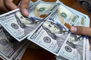 Tỷ giá ngoại tệ 30/8: Đồng USD thị uy sức mạnh
