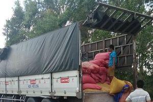Làm rõ nhóm thanh niên đâm xe vào CSGT để 'giải cứu' xe quá tải
