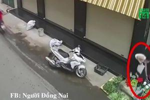 Bắt nữ quái ăn mặc lịch sự trộm túi tiền của người bán rau ở Đồng Nai