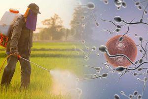 Tinh trùng loài người giảm 1,4% mỗi năm do môi trường độc hại