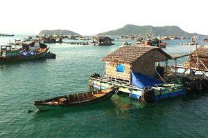 Kiên Giang chú trọng nuôi thủy sản cả mặn - lợ - ngọt